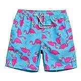 MaaMgic Mens Quick Dry Flamingo Swim Tru