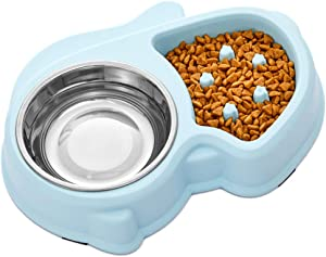 Ordermore Slow Feeder Bowl for Small Dogs & Cats