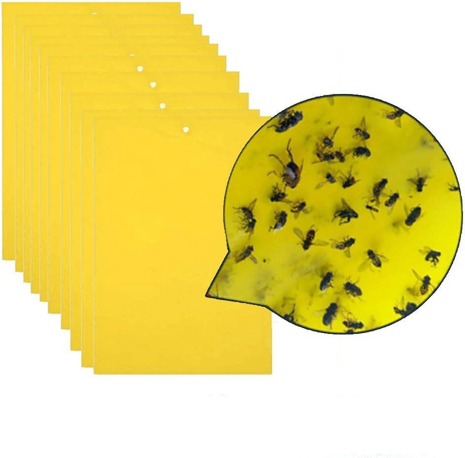 mxjeeio 20 cm * 12.5 cm trampas pegajosas de Insectos Amarillos de Doble Cara para Moscas, pulgones, minadores de Hojas, Insectos voladores, Insectos (20pc)