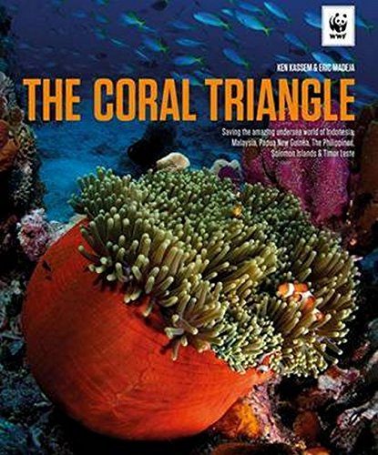 The Coral Triangle - Scuba Reefs Coral Diving