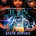 Torn Between a Goon and a Gangsta 3: The Finale Audiobook by Jade Jones Narrated by Katt Kampbell