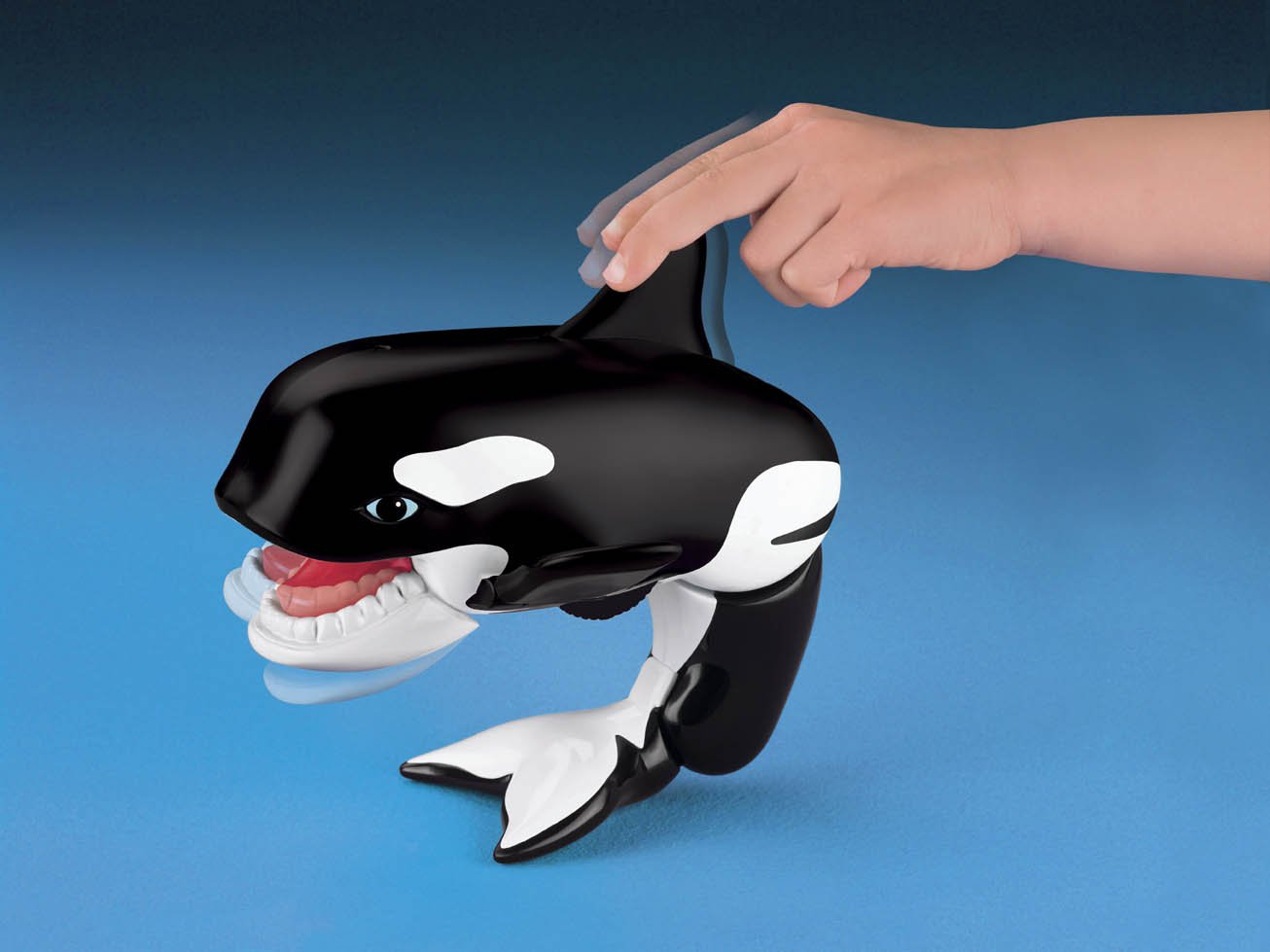 Luxury Fisher Price Whale Adornment - Bathroom and Shower Ideas ...