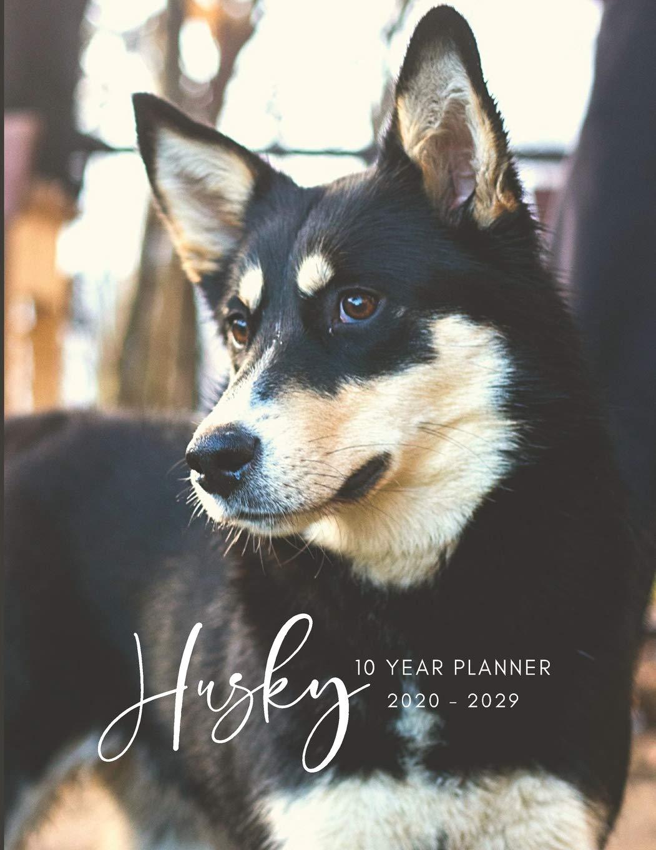 2020-2029 10 Ten Year Planner Monthly Calendar Husky Dog ...
