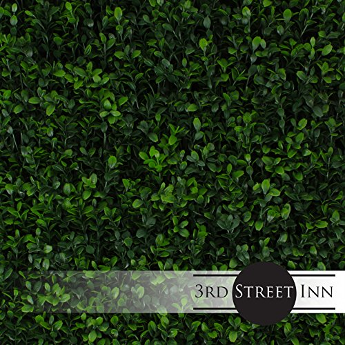 Artificial Hedge - Outdoor Artificial Plant - Great Boxwood and Ivy Substitute - Sound Diffuser Privacy Fence Hedge - Topiary Greenery Panels (2, Soft Touch Holly)
