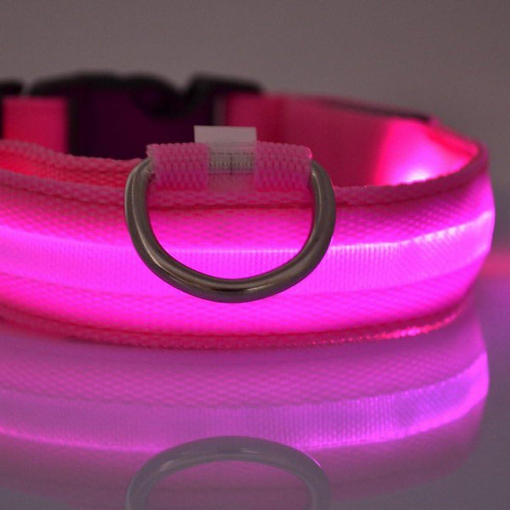 Perro de nylon azul LED nocturna de seguridad Collar intermitente correa del Light-up (Pink)