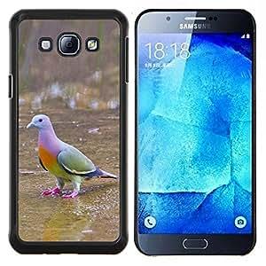 Planetar® ( Pájaro tropical Paloma Verde Ornitología ) Samsung Galaxy A8 A8000 Fundas Cover Cubre Hard Case Cover