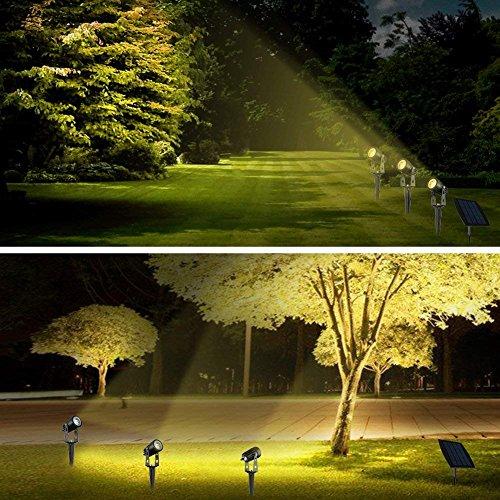 Buy spotlight on the market