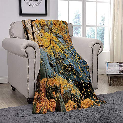 SCOCICI Super Soft Throw Blanket/Leaves,Canadian Maple Trees Falling Leaves Down Surrounded by Scenic Rocks Stones Foliage,Grey Orange/for Couch Bed Sofa for Adults Teen Girls Boys