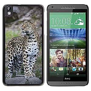 Super Stella Slim PC Hard Case Cover Skin Armor Shell Protection // M00145407 Leopard Zoo Cat Feline Exotic // HTC Desire 816