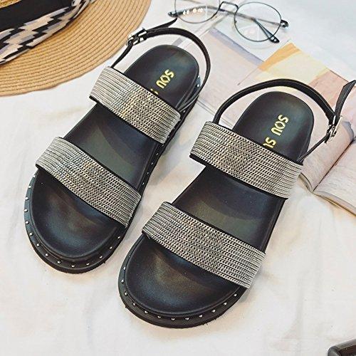 CHANCLAS SANDALS Mujer de verano de doble fondo de moda gruesa plana con lentejuelas sandalias Negro Plata elegante ( Color : La Plata , Tamaño : EU36/UK3.5/CN35 ) La Plata