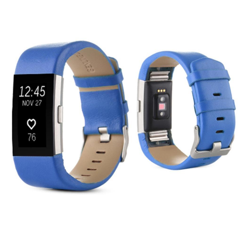 Nuevo y exclusivo reloj de piel deportivo banda, ninasill Cool correa para Fitbit Charge 2 muñeca banda pulsera: Amazon.es