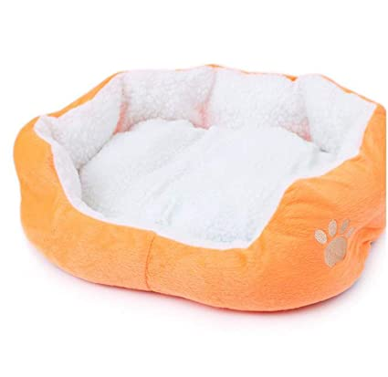 Amazon.com : PETFDH Super Soft Small Animals Dog Cat Bed Pet ...