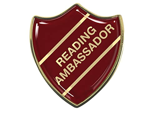 Image result for Dovecote reading ambassadors""