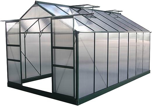 Viva Green 1299 69183 Dahlia - Invernadero de jardín de policarbonato/plástico de Color Verde. 13, 29 m². 430 x 309 x 248 cm: Amazon.es: Jardín