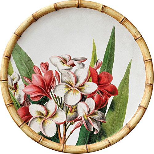Merritt Botanica Bamboo Plumeria 9-inch Melamine Salad Plates, Set of ()