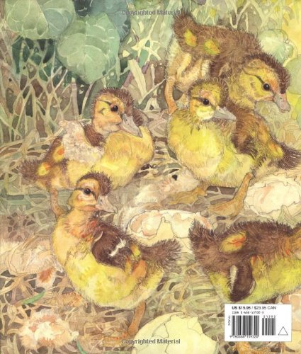 The-Ugly-Duckling-Caldecott-Honor-Book