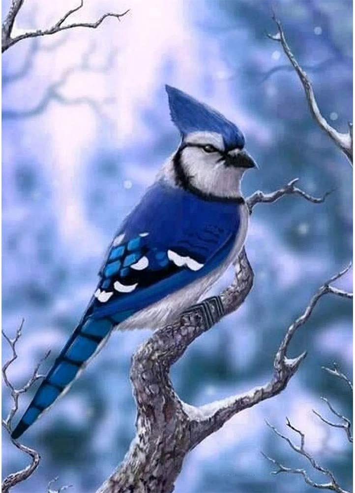 HUANSUNWO DIY 5D Diamond Painting by Number Kits, Full Drill Crystal Rhinestone Embroidery Pictures for Home Wall Decor Gift 12x16 inch - Birds & Blue Jay in Branch