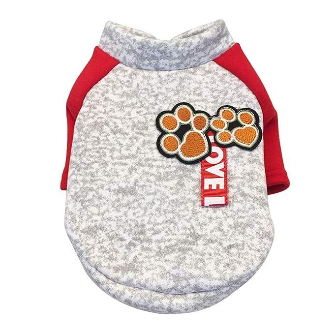 Ropa para Mascotas,Dragon868 Caliente otoño Invierno Mascotas Perros Redondos Cuello Camisas de Dos piernas Ropa: Amazon.es: Ropa y accesorios