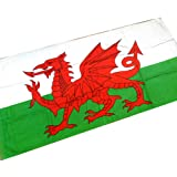 Wales Beach Towel - Tour Collection