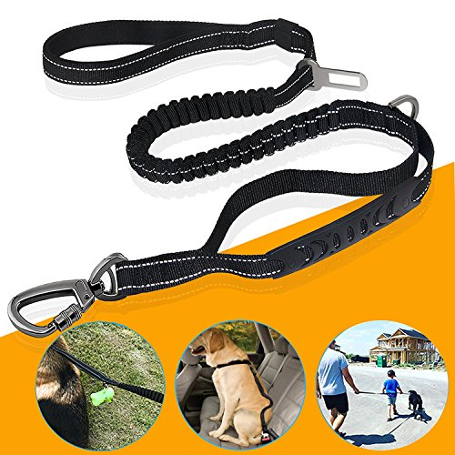 Top 10 recommendation paracord dog leashes for large dogs