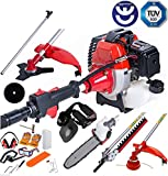 Dealourus 2019 52cc 5 in 1 Long Reach Petrol Multi Functional Garden Tool Including: Strimmer, Hedge Trimmer, Pruner Chainsaw, Brush Cutter & Extension Pole …