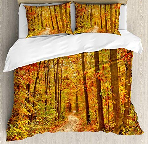 Dream-Decor Full Size Fall 4 Piece Bedding Set Duvet Cover Set, Deciduous Trees with Fall Leaves Pathway Wilderness Woodland Image, Comforter Cover Bedspread Pillow Cases with Zipper Closure