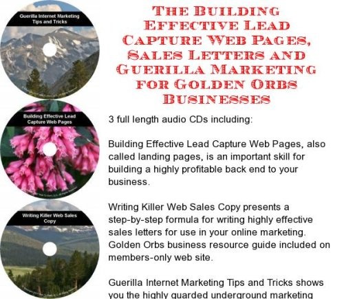 The Guerilla Marketing, Building Effective Lead Capture Web Pages, Sales Letters for Golden Orbs Businesses ()