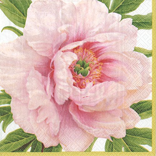 Entertaining with Caspari Blush Paper Dinner Napkins (20 Pack), Pink (Dinner Floral Paper)