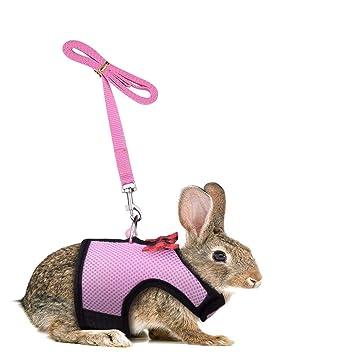 Conjunto de arnés y correa para conejitos - Arnés para mascotas ...
