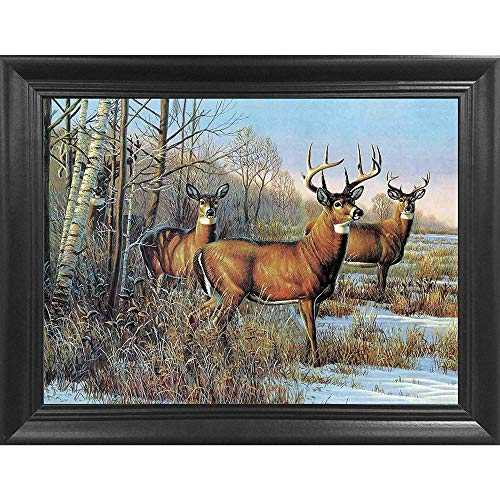 - Three Deer 3D Poster Wall Art Decor Framed Print | 14.5x18.5 | Lenticular Posters & Pictures | Memorabilia Gifts for Guys & Girls Bedroom | Forest Wildlife & Hunting Animal Picture for Home Decoration