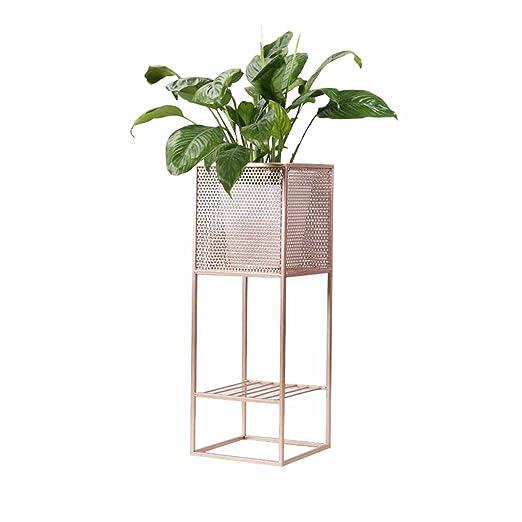 Soporte de exhibición de la flor de la planta Diseño simple 1 ...