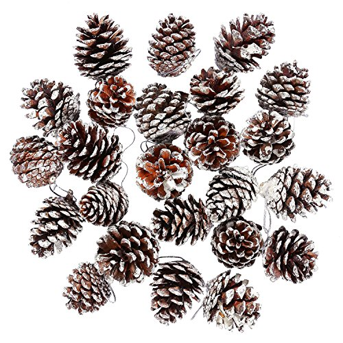 Cooraby 24 Pieces Christmas Pine Cones Ornament Natural PineCones With String Pendant Crafts for Gift Tag Christmas Tree Party Hanging Decoration (Snow) (Large Acorn Covered Bowl)