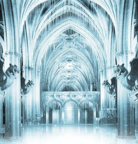 (Photography Backdrop - Ice Palace with Gargoyles - 10x10 Ft. Seamless Fabric)
