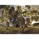 The Perfect effect canvas of oil painting 'Hiepes Tomas Paisaje con una vid 17 Century ' ,size: 8 x 11 inch / 20 x 27 cm ,this Imitations Art DecorativeCanvas Prints is fit for Nursery decor and Home gallery art and Gifts