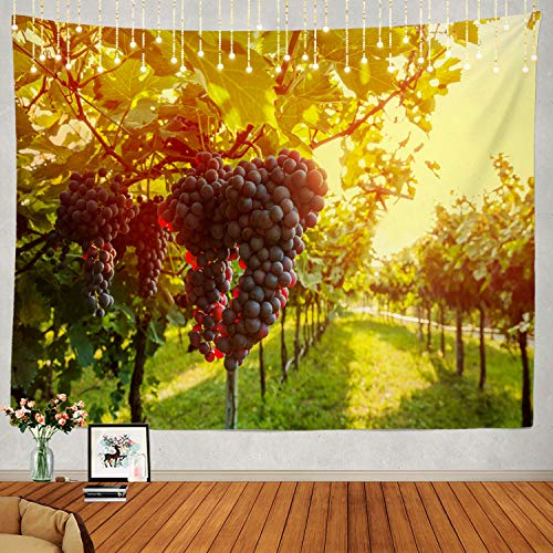 Shrahala Wine Tapestry, Sangiovese Grapes in Vineyard Wall Hanging Large Tapestry Psychedelic Tapestry Decorations Bedroom Living Room Dorm(51.2 x 59.1 Inches, Green)