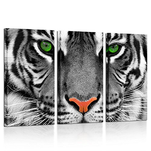 Kreative Arts Large 3 Pieces Canvas Prints Wall Art Green...