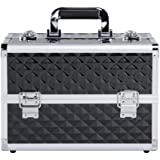 go2buy Aluminum Cosmetic Makeup Train Cases Portable Make-up Organizer Box Professional Artist Train Case,Pink