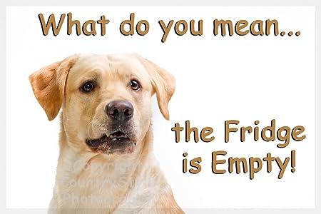 Amarillo de oro de perro Labrador imán divertido del refrigerador ...
