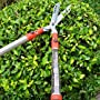 Best Grass Clippers & Shears