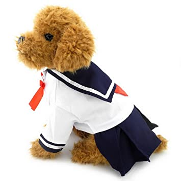 Amazon.com: ranphy Pequeño perro gato ropa para las niñas ...