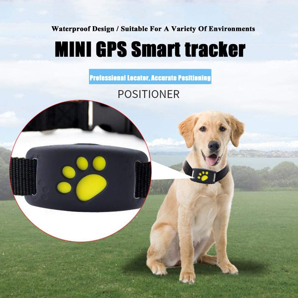 LifeUp Localizador GPS para Perros Perros y Gatos, Localizador Anti-Perdida Anti-Robo de Dispositivos De Alarma con Mando a Distancia, Compatible para ...