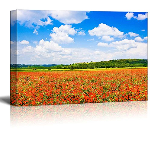 Beautiful Scenery Landscape Field of Red Poppy Flowers with Blue Sky and the Medieval Village of Monteriggioni Tuscany Italy Wall Decor ation