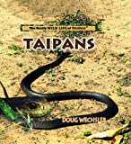 Taipans (The Really Wild Life of Snakes)