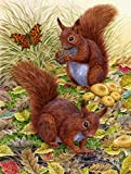 Caroline's Treasures ASA2133CHF Red Squirrels Canvas House Size Flag, Large, Multicolor