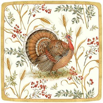 Thanksgiving Paper Plates Thanksgiving Dinner Plates Thanksgiving Table Decor Turkey Plates Pk 16  sc 1 st  Amazon.com & Amazon.com: Thanksgiving Paper Plates Thanksgiving Dinner Plates ...