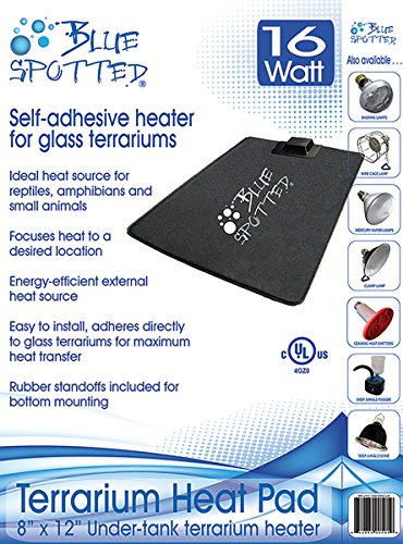 Blue Spotted Under Tank Heater, Terrarium Heat Pad, Size Medium 8 Inches x 12 Inches, For Reptiles, Amphibians And Small Animals And Use with Glass Terrariums by Blue Spotted