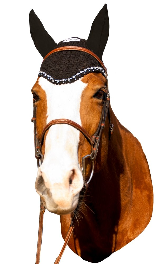 Equine Couture Fly Bonnet with Crystals - Pony Color - Black, Size - Cob