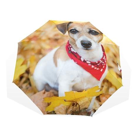 4f6590b8164a Amazon.com : GUKENZ Jack Russell Terrier Puppy Dog Travel Umbrella ...