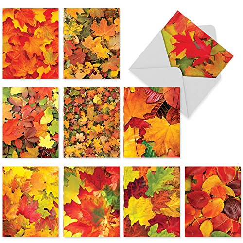 M2009 Leaf A Message: 10 Assorted Blank All-Occasion Note Cards Feature a Pile of Autumn Colors, w/White Envelopes.