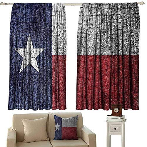 Western Decor Collection Bedroom balcony living room curtain Texas State Flag Painted on Luxury Crocodile Snake Skin Patriotic Emblem 70%-80% Light Shading, 2 Panels,55